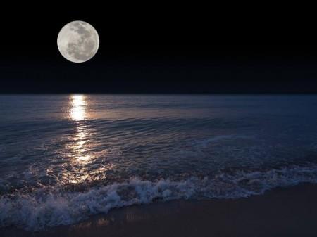 luna teresa.jpg